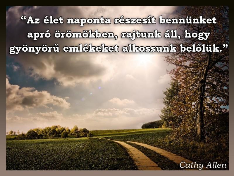 idézetek mondások Az élet naponta részesít bennünket apró örömökben   Idézetek, mondások
