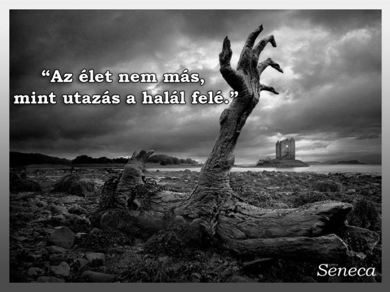 idézetek mondások Az élet nem más, mint utazás a halál felé   Idézetek, mondások