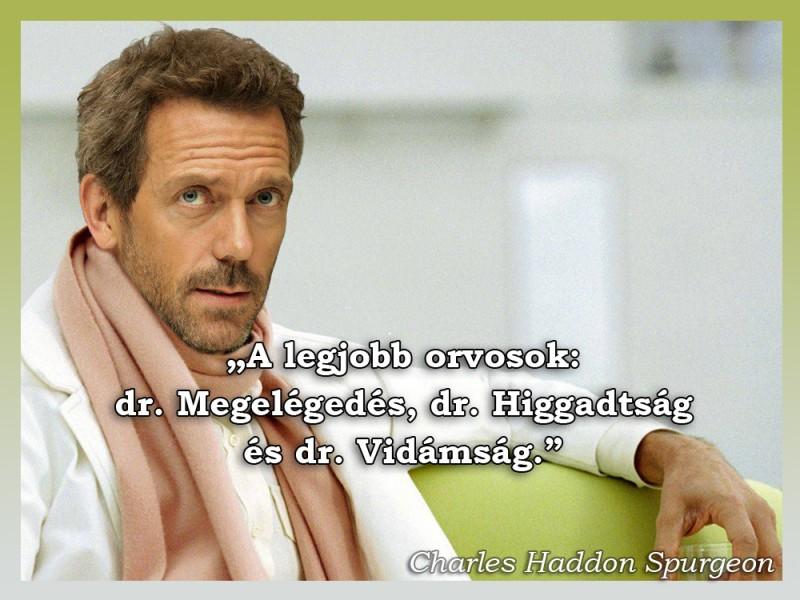 legjobb egészség idézetek A legjobb orvosok   Idézetek, mondások